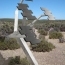 Solar Tree in desert