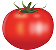 Tomato-by-Rones-2400cpx